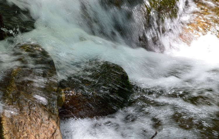 Mountain Stream Close up